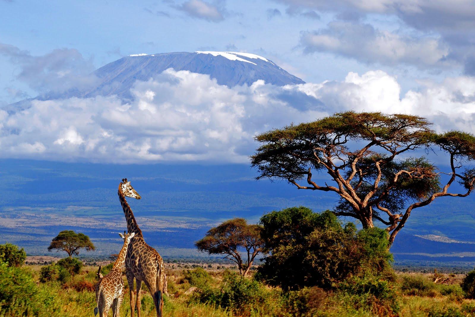 Mt-Kilimanjaro-natural-wonders
